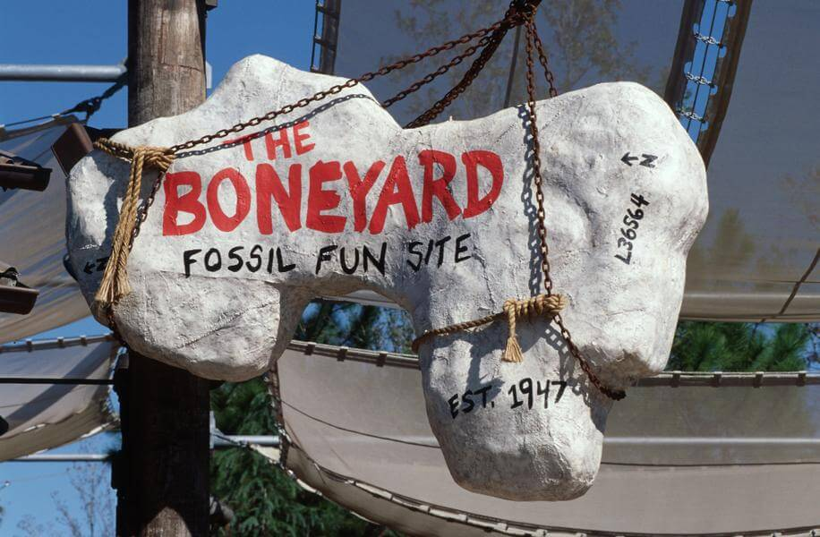 The Boneyard Dig Site